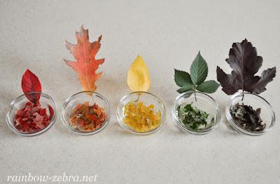 Листья в спирту