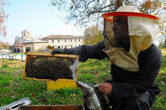 Το Κέντρο Μελισσοκομίας Πελοποννήσου καλεί τους μελισσοκόμους να υποβάλλουν Δήλωσεις Διαχείμασης
