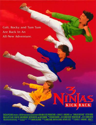 Ver Tres pequeños ninjas 2 (1994) Online