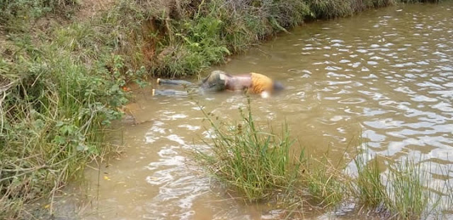ITAMARAJU | Homem é encontrado morto com perfuração na cabeça na zona rural