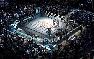 boks, boksu ringi yapımı, rink ölçüleri, boks ringinin özlelikleri, ring nedir