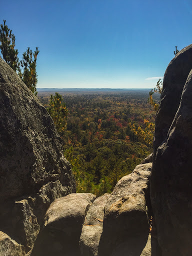 View from the lookout perch at Castle Mound in the Black River State Forest