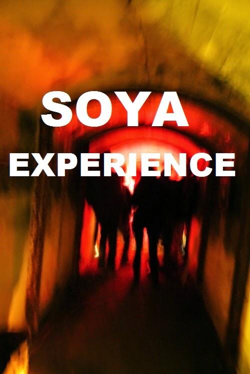 http://www.soya-experience.blogspot.cz/