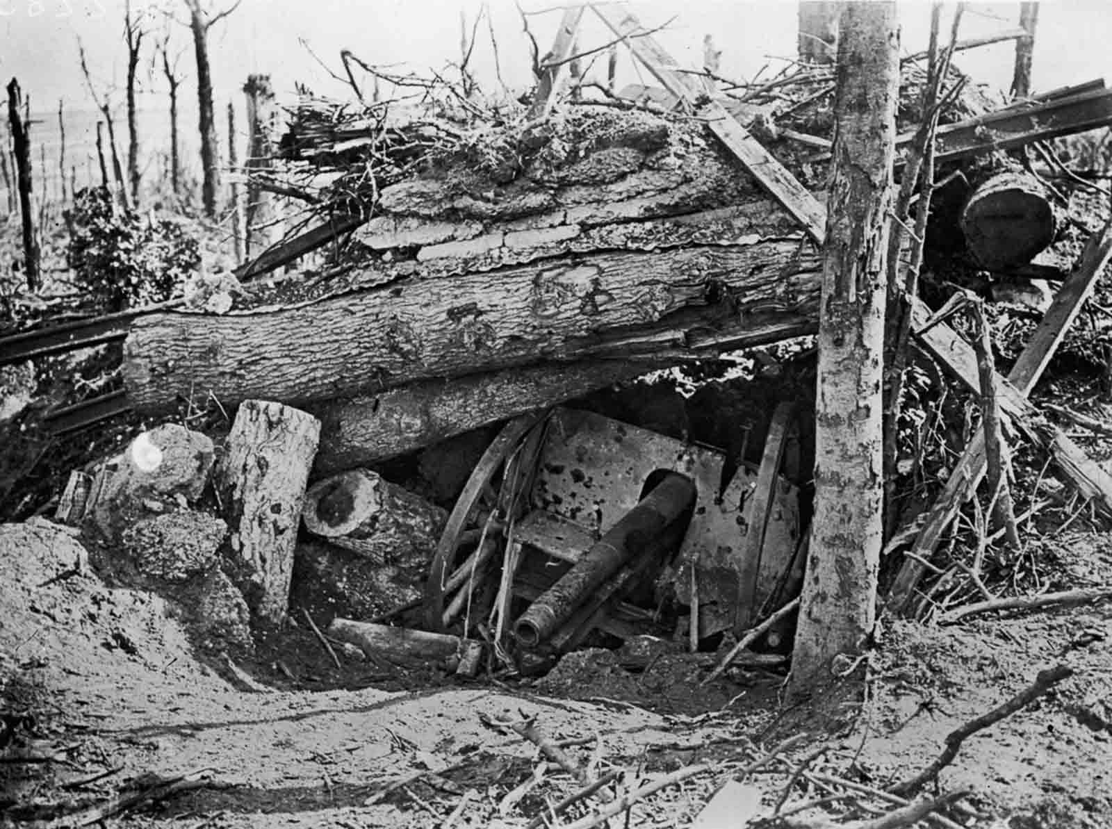 A German cannon lies buried under uprooted trees in Louage Wood during an Allied offensive. October 10, 1916.