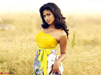 Beautiful Actress Amala Paul ~  Exclusive Picture Gallery 031.jpg