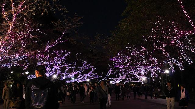 Tokyo - Parc Ueno