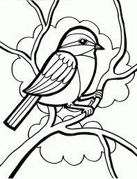 Cute Little Bird Coloring Sheet For Kids