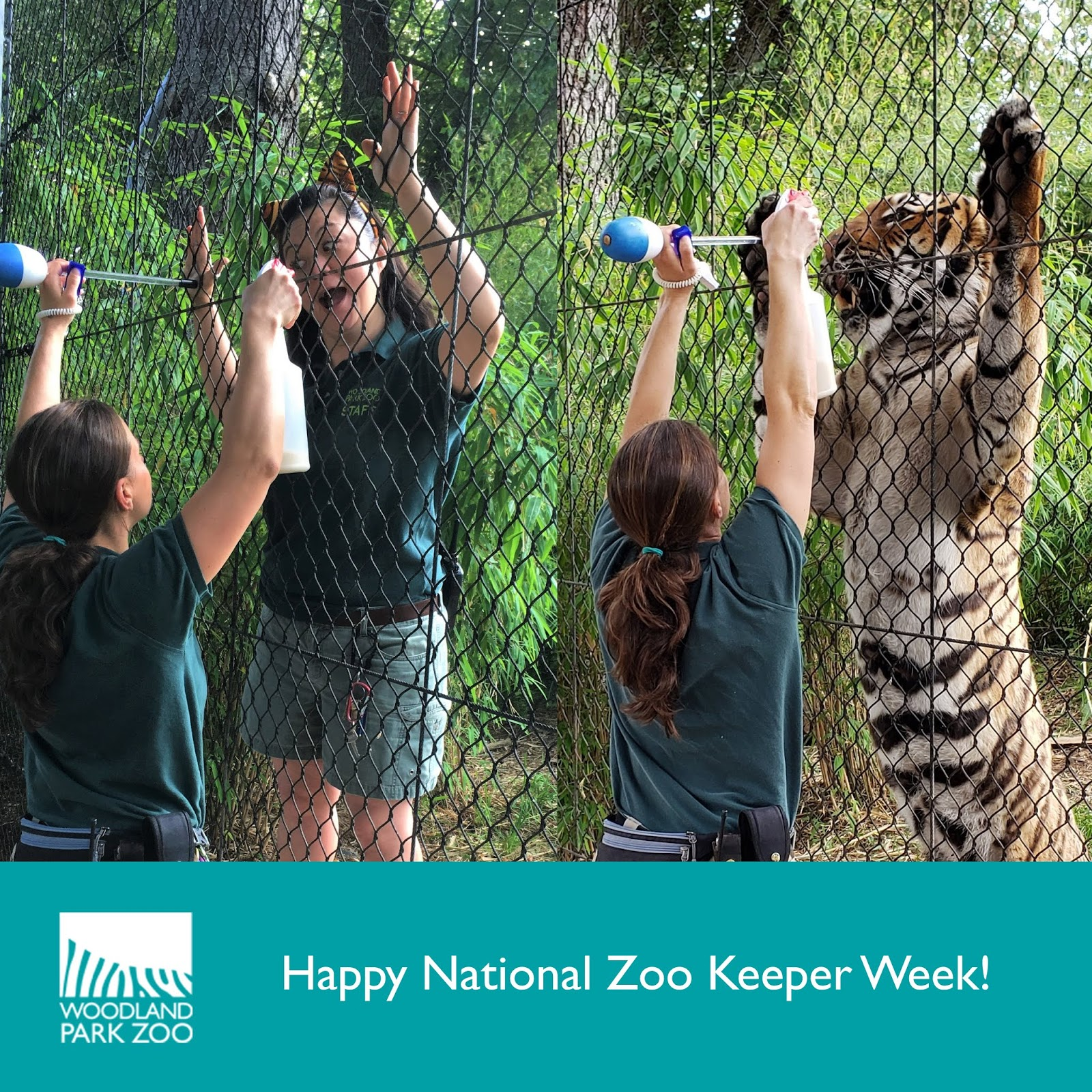 Woodland Park Zoo Blog Happy National Zookeeper Week