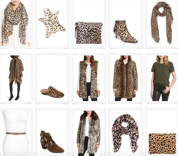 leopard print scarf and coat