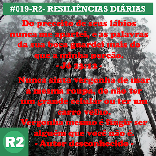 019-R2- RESILIÊNCIA 2