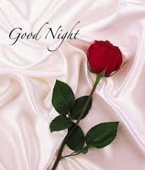 Good Night Wish With Rose