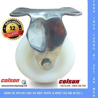 Bánh xe đẩy càng inox 304, bánh xe Nylon tải từ 100kg đến 136kg/bánh www.banhxepu.net
