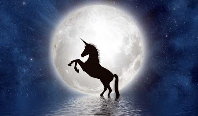 unicorn irak