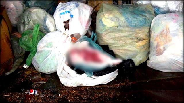 Corpo de bebê é encontrado em lixeira de Tobias Barreto