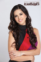 Sunny Leone Latest Photo Shoot HeyAndhra