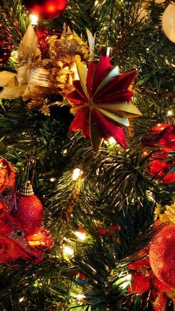 Desktop HD Wallpaper Christmas Trees