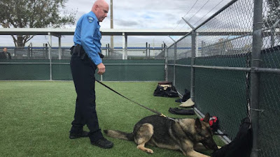 Florida hospital adds K-9 teams to patrol campus