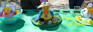 rubber duck competition