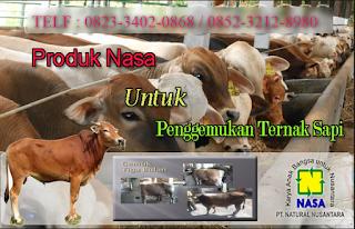 AGEN NASA DI Dolok Sigompulon, Padang Lawas Utara - TELF 082334020868