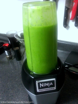bobs-red-mill-protein-ninja-smoothie