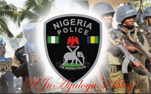 Over 150,000 Policemen Serve VIPs And Unauthorised Persons - Okiro