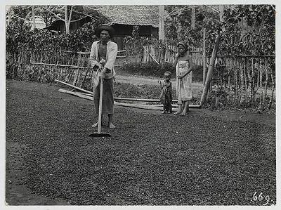 Sejarah Kopi di Indonesia, Sejarah Kopi, Yamada Kopi