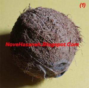 langkah-langkah dan cara membuat kerajinan tangan wadah multigunan dari batok (tempurung) kelapa yang sangat mudah untuk anak-anak 1