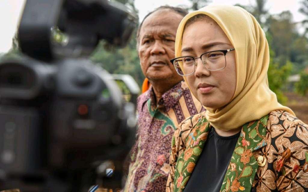 Bupati Purwakarta Anne Ratna Mustika menyatakan bahwa kegiatan belajar mengajar (KBM) di Purwakarta masih dilakukan virtual atau dalam jaringan (daring) untuk tahun ajaran baru 2020/2021. Hal itu berlaku untuk semua tingkatan baik SLTA, SMP, SD maupun PAUD.