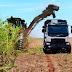 Camión Volvo con dirección automática para aumentar la cosecha de caña de azúcar en Brasil