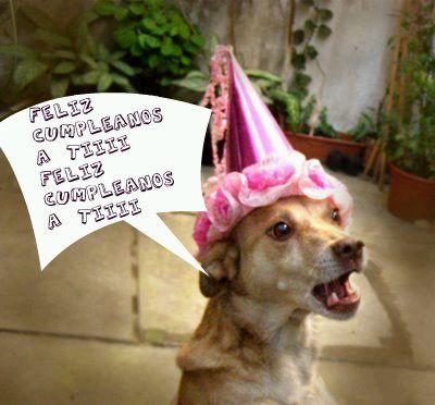 Tarjetas de Cumpleaños Graciosas