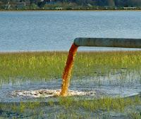 بحث حول مصادر تلوث الأوساط المائية والمحافظة على سلامة هذه الأوساط - الأمراض الناتجة عن تلوث المياه والوقاية منها
