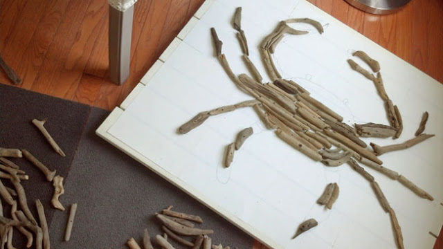 how to make a crab art out of driftwood
