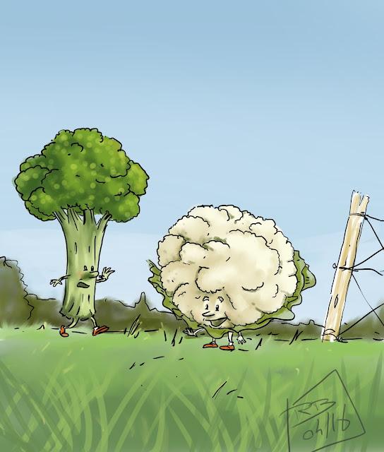 chou-fleur et brocoli