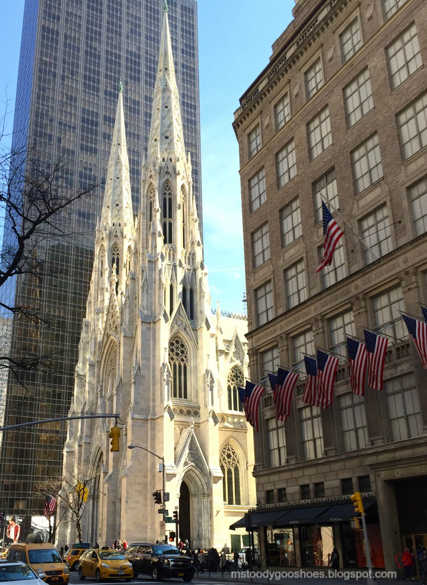 St. Patrick's Cathedral,  New York City - Ms. Toody Goo Shoes