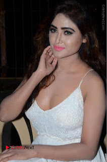 Telugu Actress Model Sony Charishta Pos in White Long Dress at Nanna Nenu Na Boyfriends Audio Launch  0123.JPG