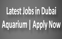 Latest Jobs in Dubai Aquarium