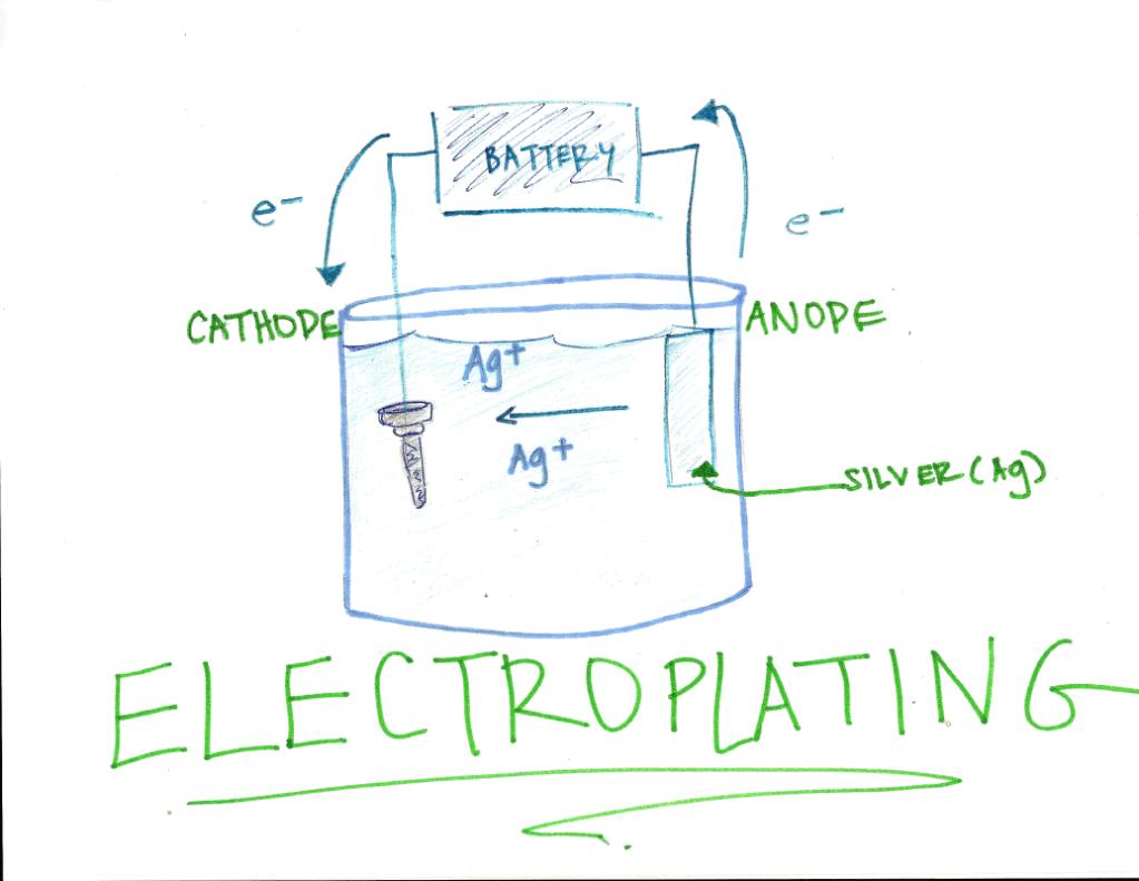 Zoo Internships: Electroplating
