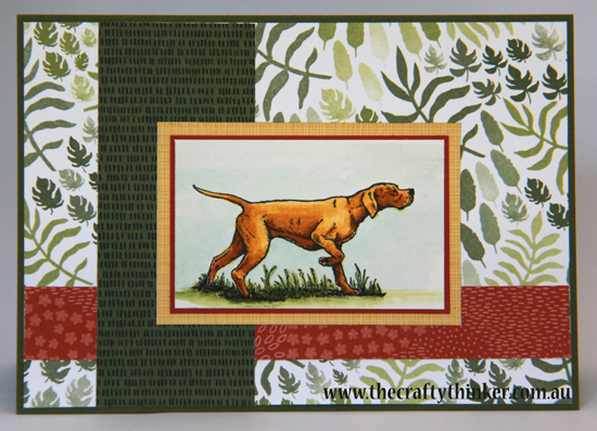 SU, The Wilderness Awaits, Masculine Card, Gift Pack of Cards, Hand crafted, wallet