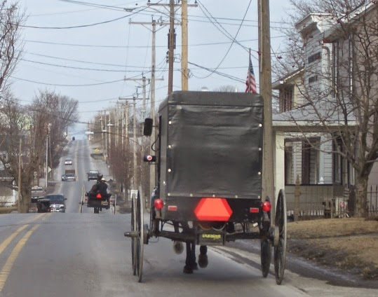 Renno Amish Buggy