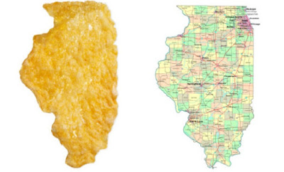 Flake of corn shaped State of Illinois, 2008