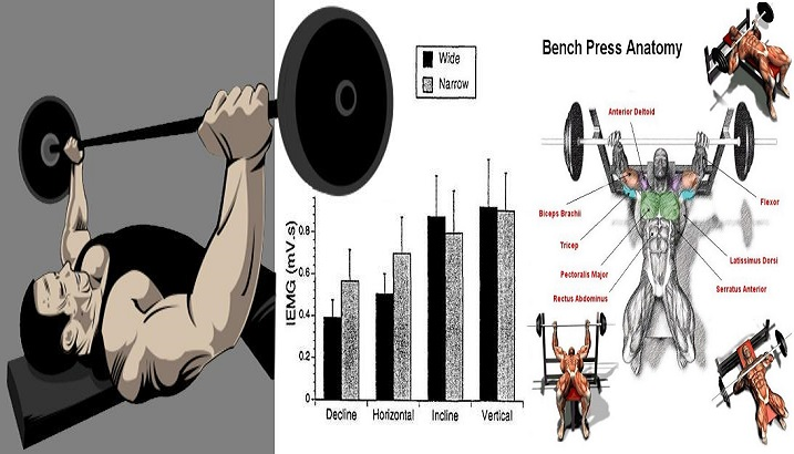 Boost Your Bench Press To Gain Chest Mass