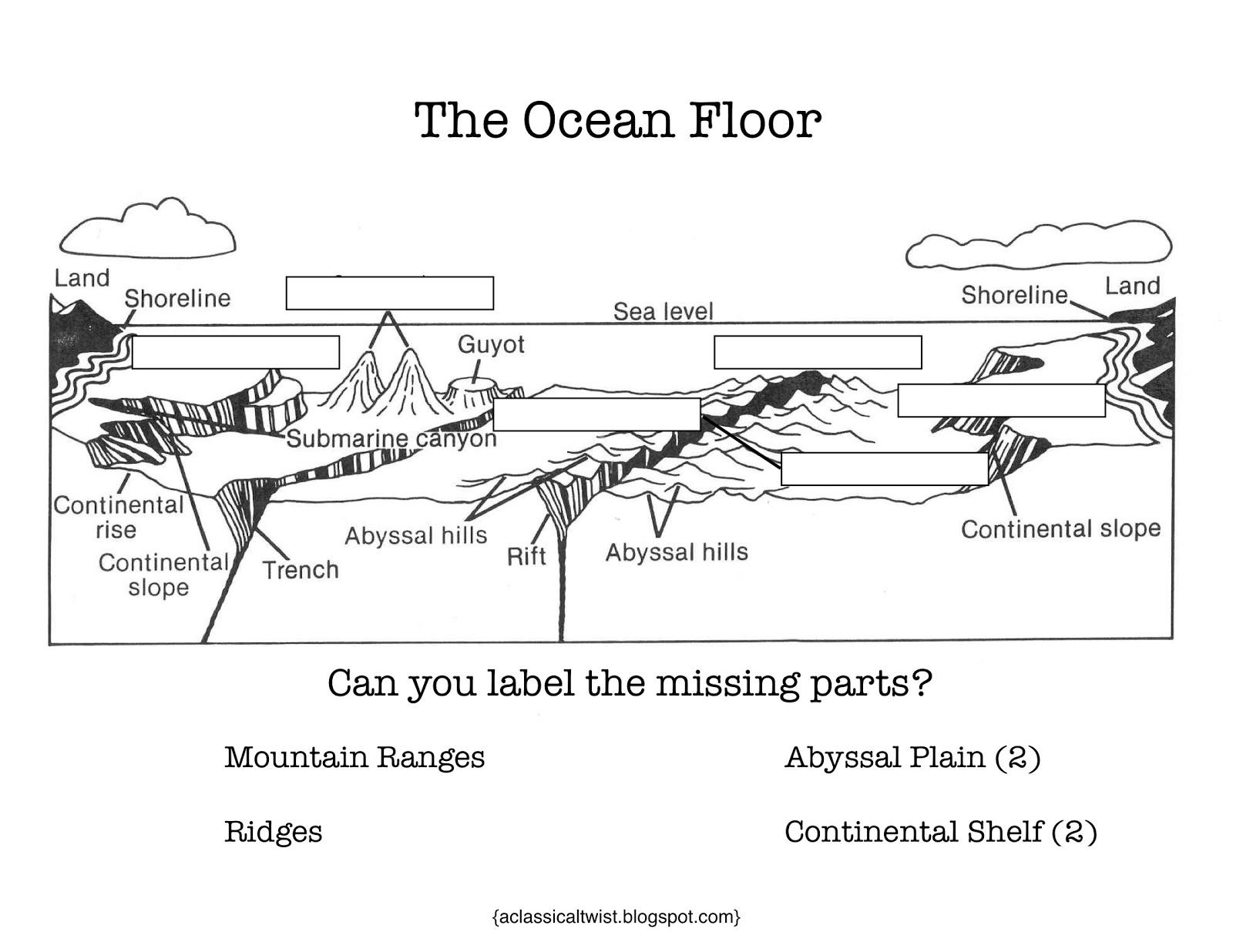 worksheet Ocean Floor Diagram Worksheet pictures ocean floor worksheet pigmu features davezan