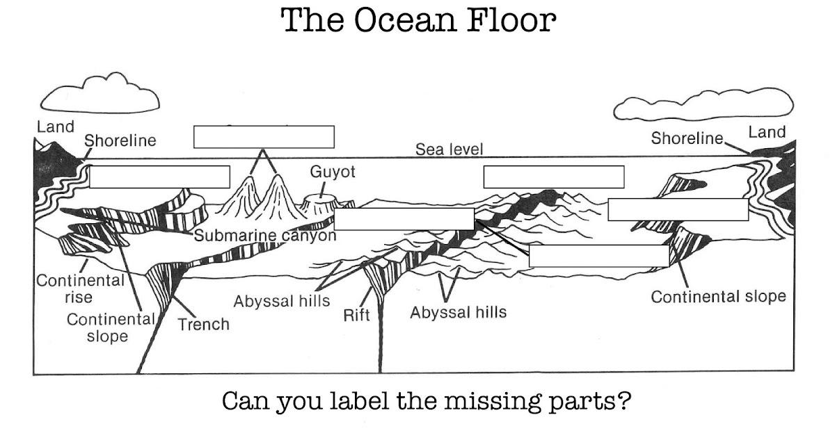 Ocean Floor Diagram 5th Grade