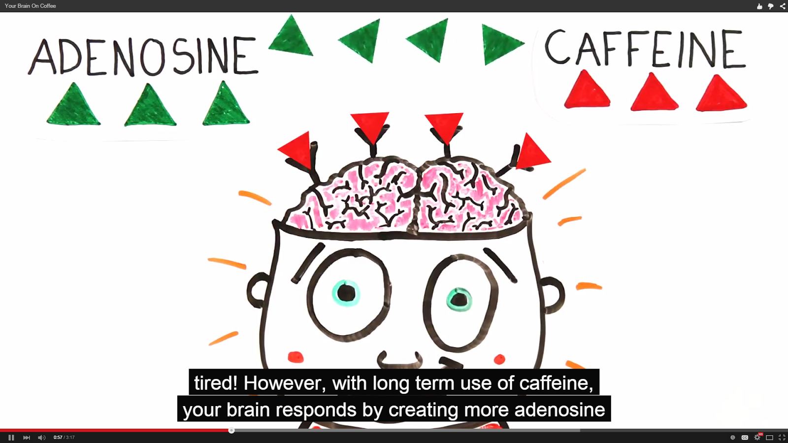 What exactly does coffee do to your brain? | The SS Journal