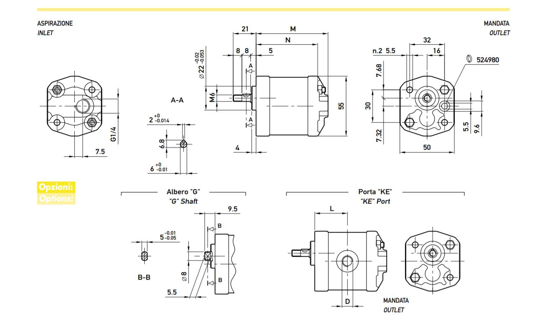 MARZOCCHI Hydraulic Gear Pump - UK0.25 D 36 G ( UK0,25-D-36-G-ST )