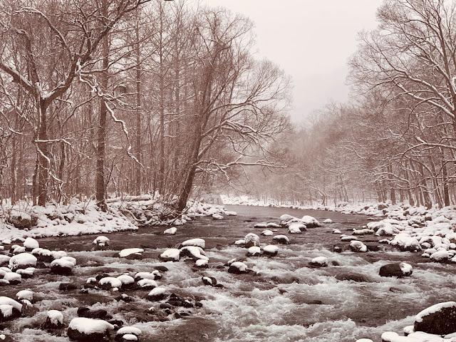 奧入瀨溪雪景