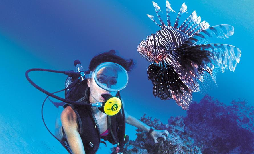 Peralatan Diving