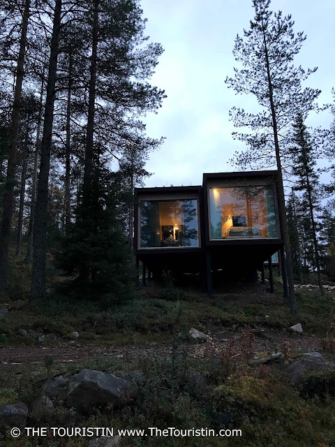 Arctic TreeHouse Hotel design forest stylish