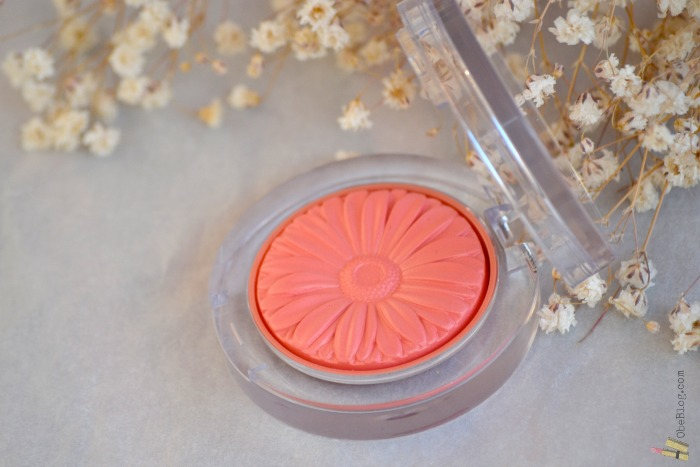 Cheek_Blush_Clinique_Pop_Peach_ObeBlog_03