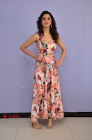 Actress Richa Panai Pos in Sleeveless Floral Long Dress at Rakshaka Batudu Movie Pre Release Function  0003.JPG